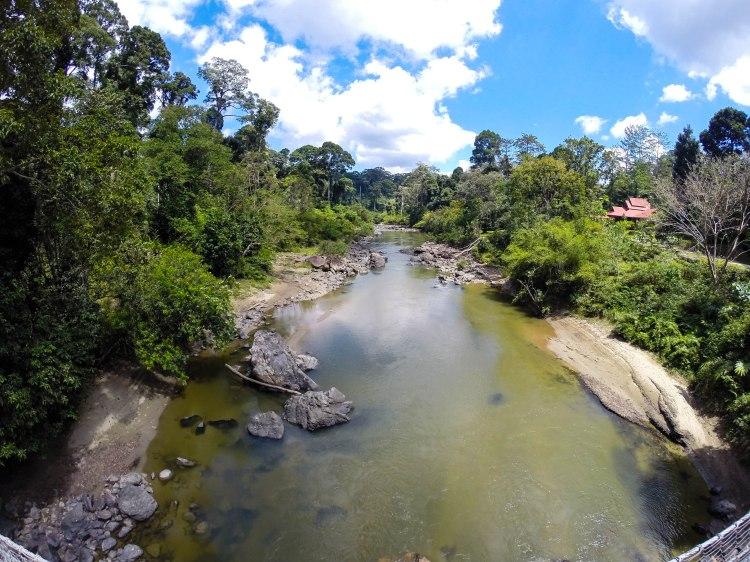 Segama river